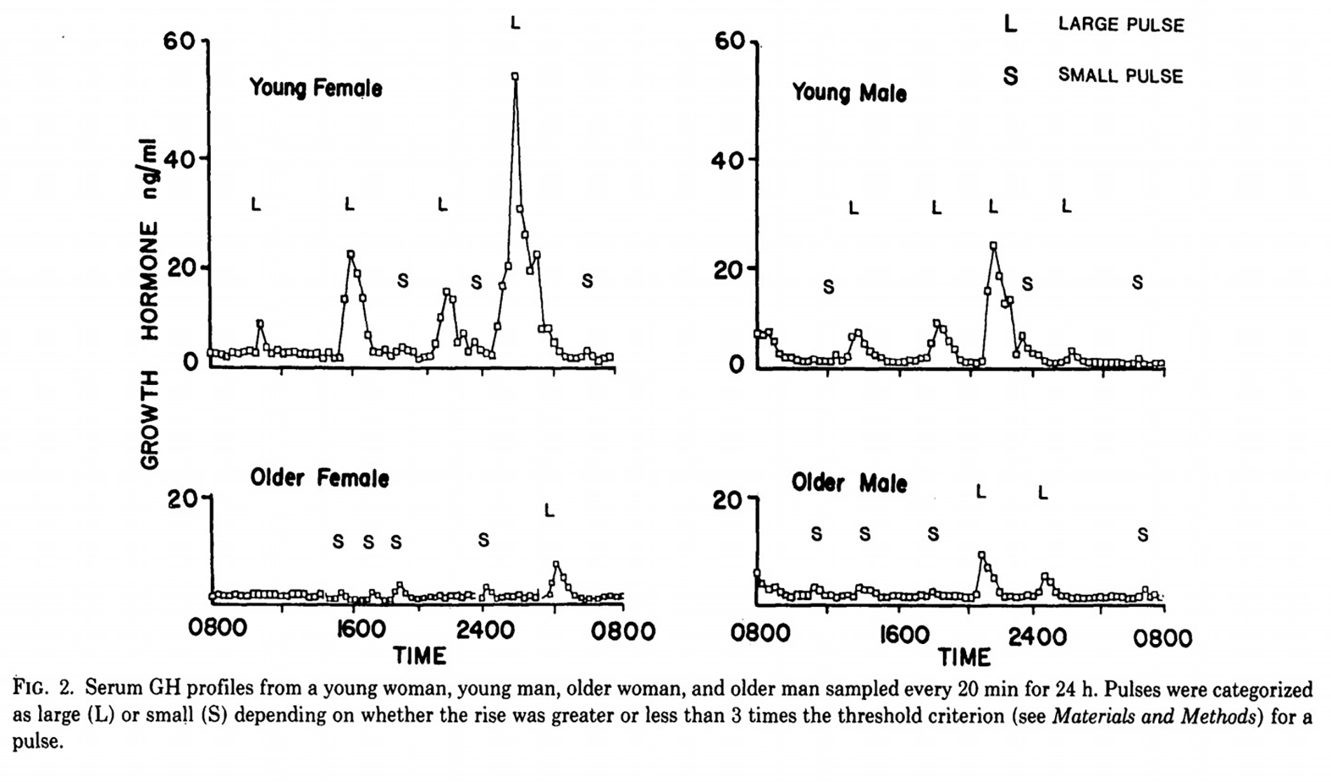 Serum levels of growth hormone in men and women, old and young, showing little difference between older men and women's levels.