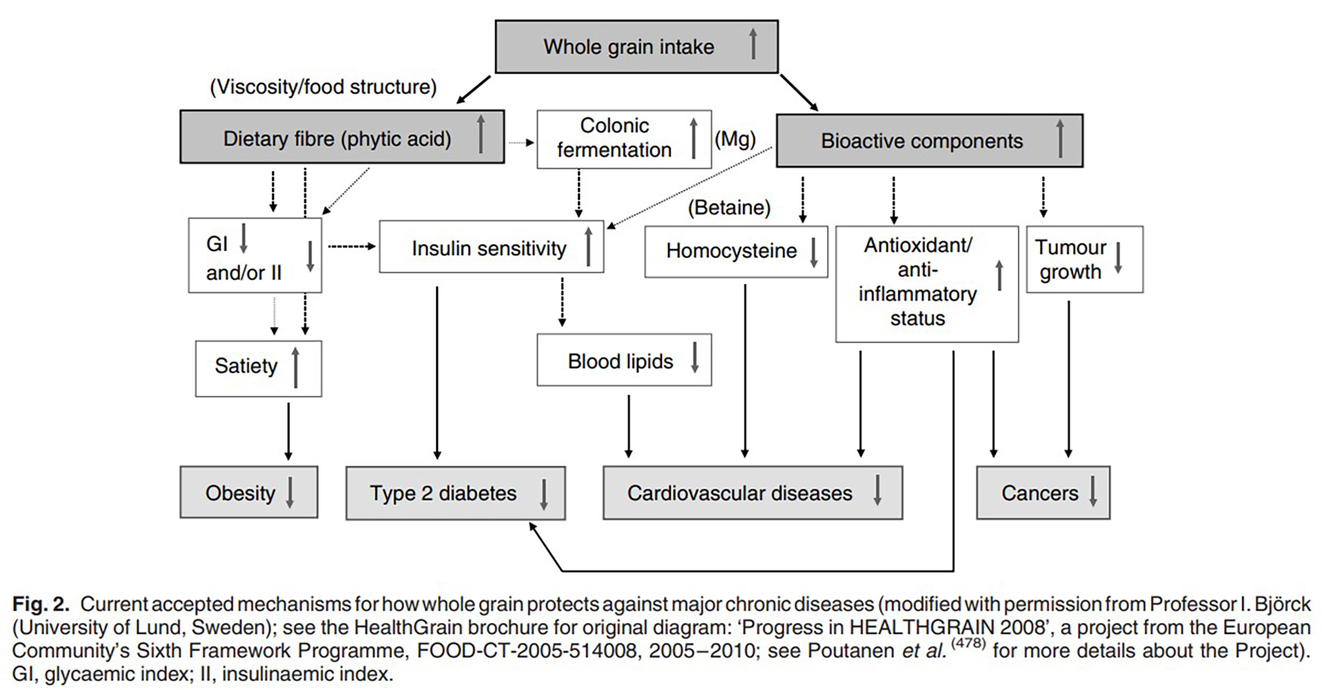 Diagram illustrating relationship between wholegrain consumption and various diseases.